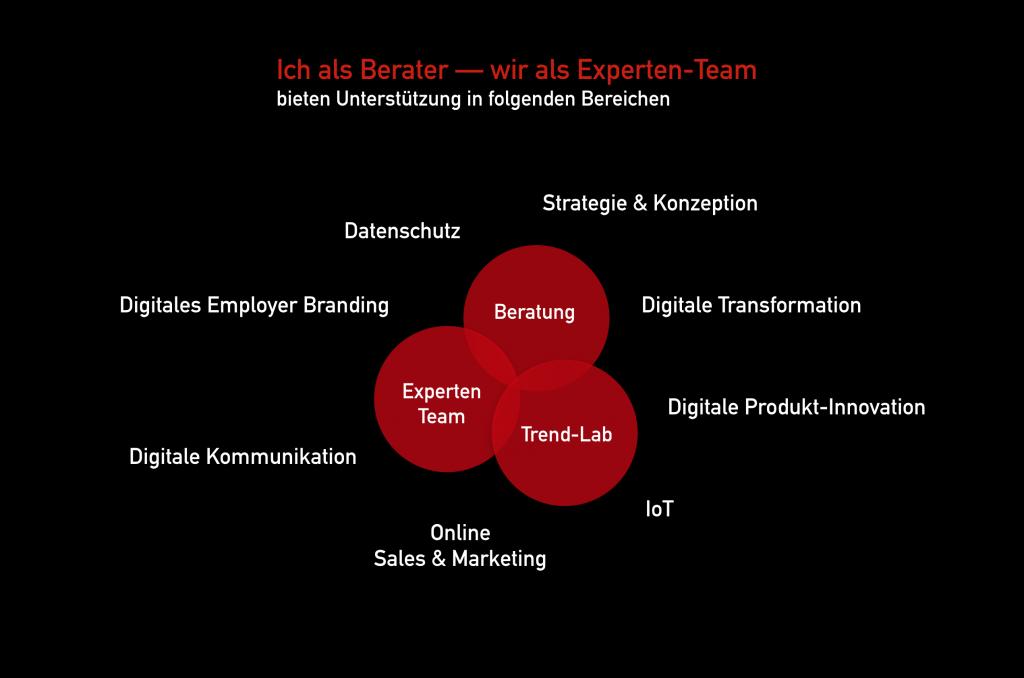 Digital-Beratung Spektrum von Essinger Consulting (Infografik: Bereiche der Digital-Experten)